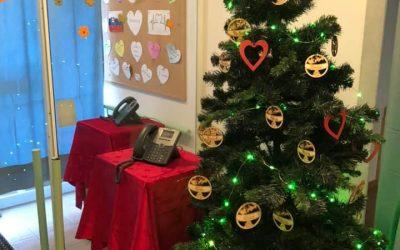 Projekt návšteva na Vianoce